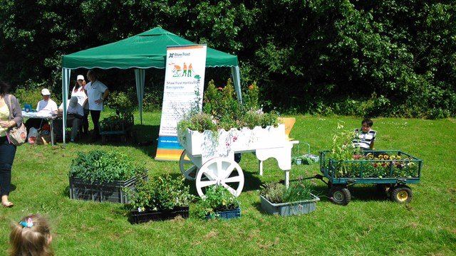The sun shines on the Shaw Trust Enterprises - Hampshire open day