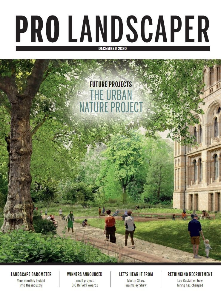 Pro Landscaper December