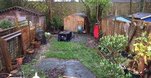 Garden before transformation